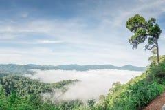 Landskap av mist på berget arkivfoto