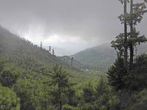Landskap av moln och berg och greenaries arkivfoton