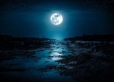 Landskap av natthimmel med många stjärnor och ljus fullmåne arkivbilder