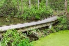Landskap av Nixon Park i Loganville, Pennsylvania Royaltyfri Foto