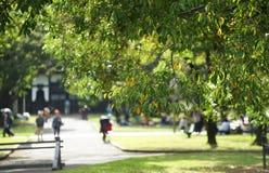 Landskap av parkera var det var fint Royaltyfria Foton