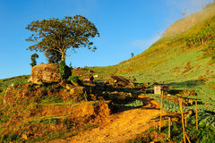 Landskap av phutabberk Arkivbilder