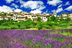 Landskap av Provence royaltyfria bilder