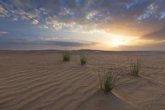 Landskap av sanddyn och gräs med moln på solnedgången arkivbild