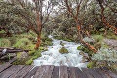 Landskap av Santa Cruz Trek, Cordillera Blanca, Peru South America Royaltyfri Foto