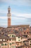 Landskap av siena med tornet av Mangia Royaltyfri Fotografi