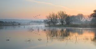 Landskap av sjön i mist med solglöd på soluppgång royaltyfria bilder