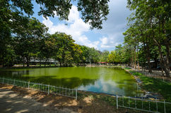 Landskap av sjön och träd i stad Royaltyfri Fotografi