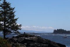 Landskap av Stilla havet nära Ucluelet, Kanada Royaltyfri Foto