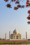 Landskap av Taj Mahal från norrsida över den Yamuna floden på solnedgången Royaltyfri Bild