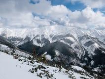 Landskap av Tatra Arkivbild