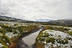 Landskap av Torres del Paine Royaltyfri Fotografi