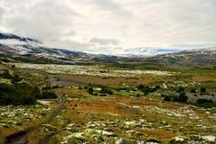 Landskap av Torres del Paine Fotografering för Bildbyråer