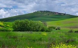 Landskap av Tuscany runt om Pienza Royaltyfri Fotografi