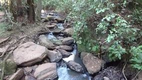 Landskap av vattenfallet på den Karura skogen lager videofilmer