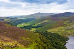 Landskap av Wicklow berg, Irland Arkivfoto