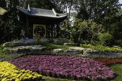 Landskap av Yuyuantan parkerar i Peking Royaltyfri Fotografi