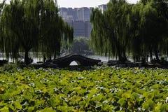 Landskap av Yuyuantan parkerar i Peking Royaltyfria Bilder