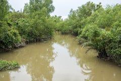 Landskap Ben Tre Province, Vietnam Arkivfoton