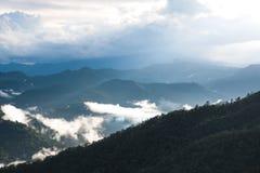 Landskap bilden av grönskarainforestkullar i dimmig dag med blå himmel fotografering för bildbyråer