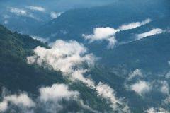 Landskap bilden av grönskarainforestkullar i dimmig dag med blå himmel arkivfoton