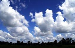 Landskap blå himmel med vita moln arkivfoto