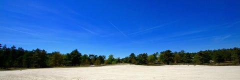 Landskap Brunssumerheide Arkivfoto