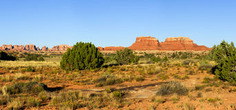 Landskap Canyonlands nationalpark Royaltyfri Foto