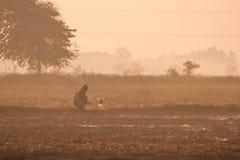 Landskap Chaiyaphum i Thailand Arkivbilder