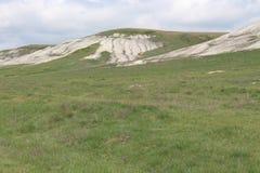 Landskap Cretaceous berg grönt barn för gräs royaltyfria foton