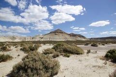Landskap efter Punta Loma nära Puerto Madryn, en stad i det Chubut landskapet, Patagonia, Argentina royaltyfri bild