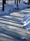 Landskap för Allerton Parkvinter Arkivbild
