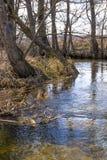 Landskap för blå flod för vår härligt lantligt bygd, royaltyfria bilder