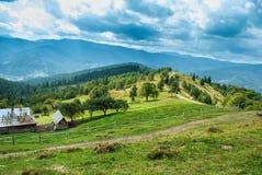 Landskap för Carpatian bergsommar royaltyfria foton