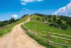 Landskap för Carpatian bergsommar royaltyfria bilder