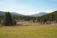 Landskap för den Doda Pilii bosättningen i de Apuseni bergen, Rumänien Fotografering för Bildbyråer