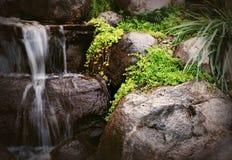 Landskap för Digitalt fotografi av den utomhus- vattenfallet arkivbild