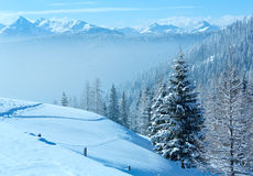 Landskap för dimmigt berg för morgonvinter Arkivbilder