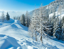 Landskap för dimmigt berg för morgonvinter Fotografering för Bildbyråer