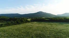Landskap för fält för grönt gräs med fantastiska berg på bakgrunden skjutit Asfaltera vägen med gröna ängar, buskar lager videofilmer