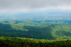 Landskap för Forest Green bergskog Landskap för skog för skog för dimmigt berg fantastiskt Arkivfoto