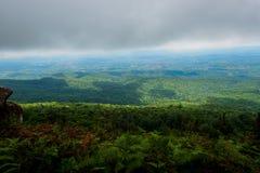 Landskap för Forest Green bergskog Landskap för skog för skog för dimmigt berg fantastiskt Arkivfoton