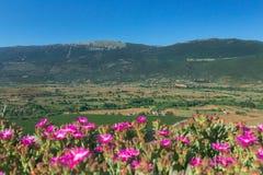 Landskap för grön dal för sommar lantligt med berg i italienare Abruzzo Royaltyfria Bilder