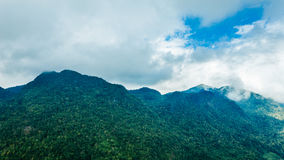 Landskap för härlig sikt eller natur och himmel för bästa lopp i Thailand Gröna träd med dimma i berg Thailand Royaltyfri Bild