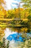 Landskap för höstskogreflexion Skog, damm & fotbro royaltyfri foto