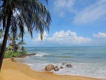 Landskap för havssida Royaltyfria Bilder