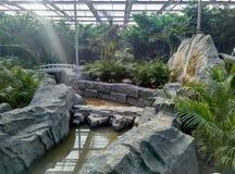 Landskap för inomhus trädgård Arkivfoto