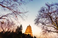 Landskap för lågt ljus av den stora lösa gåspagoden, Xian, Kina Arkivfoto