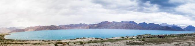 Landskap för Leh ladakhsjö i Indien Arkivfoton