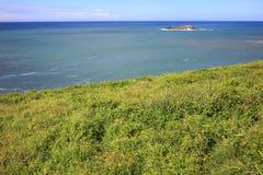 Landskap för naturreserv Royaltyfri Foto